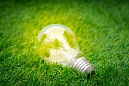 Photo pour Eco concept - light bulb grow in the grass - image libre de droit