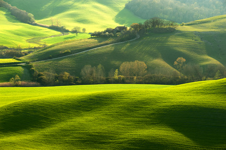 Photo pour Pastoral green field with long shadows in Tuscany, Italy - image libre de droit
