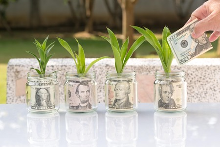 Photo pour money in jar glass growing as plant business concept - image libre de droit