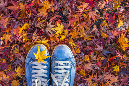 Photo for Autumn season in hipster style shoes - Royalty Free Image