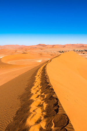 Photo for Red sand dunes in Deadvlei, Sossusvlei, Namib-Naukluft National Park, Namibia - Royalty Free Image