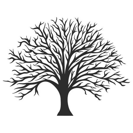Illustrazione per Object oak tree silhouette, vector - Immagini Royalty Free