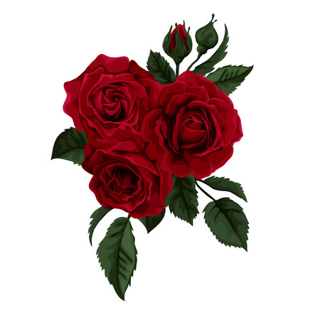 Ilustración de Beautiful bouquet of roses isolated on white. Perfect for background greeting cards and invitations of the wedding, birthday, Valentine\\\\ - Imagen libre de derechos