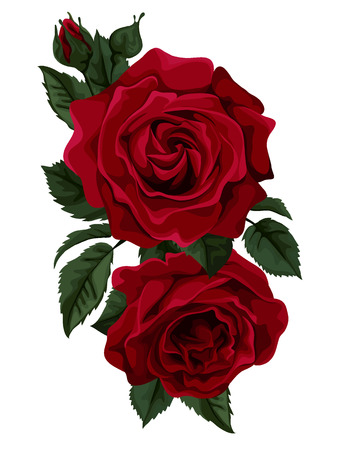 Ilustración de Beautiful bouquet of red  roses isolated on white. Perfect for background greeting cards and invitations of the wedding, birthday, Valentine - Imagen libre de derechos