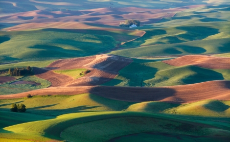The palouse area in Washingt mural