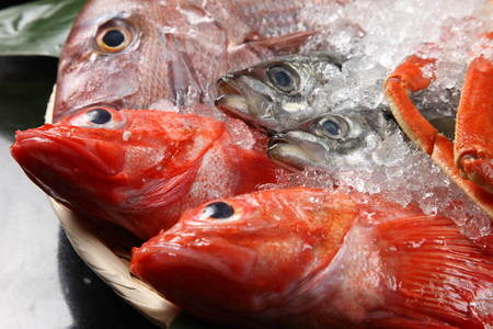 Photo pour fresh fish - image libre de droit