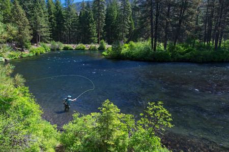 Foto de Fly Fisherman casting into the clear waters of the Metolius River. - Imagen libre de derechos