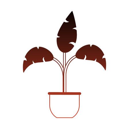 Illustrazione per Plant in pot vector illustration graphic design - Immagini Royalty Free