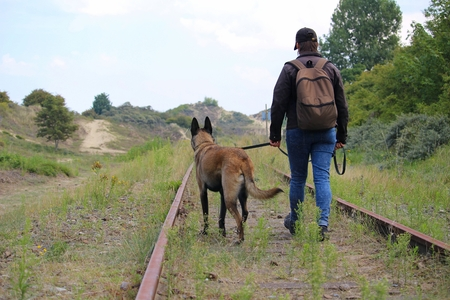 Photo for A master and his dog on a walk along the rails near the dunes - Royalty Free Image