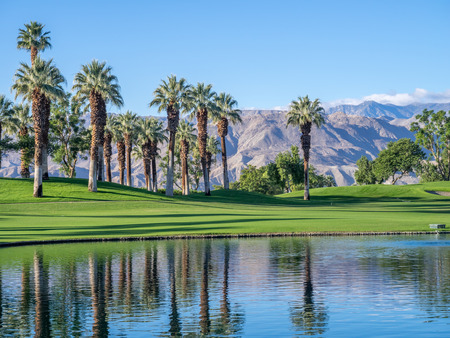 Photo for Palms reflecting in water on a golf course in Palm Desert California. - Royalty Free Image