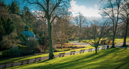 Photo for Benches in the Valley Gardens, Harrogate, North Yorkshire - Royalty Free Image