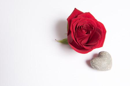 Photo pour Rose and heart - image libre de droit