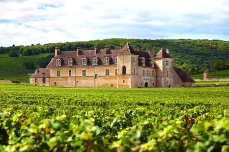 Photo pour Burgundy, France - September 10, 2013: Landscape view of a typical sunlit vineyard in Burgundy, France with Chateau Clos Du Vougeot, stone walls and hills in the background - image libre de droit