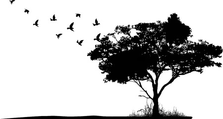 Illustration for tree silhouette with birds flying - Royalty Free Image