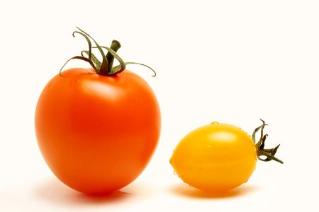 close up of a red round and a yellow football like tomatoes on white background