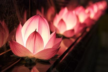 Photo pour light of lotus - image libre de droit