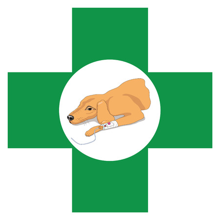 Veterinary cross sign with image of recovering dog