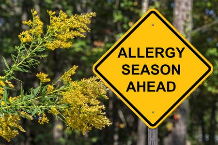 Foto de Caution Sign - Allergy Season Ahead - Imagen libre de derechos