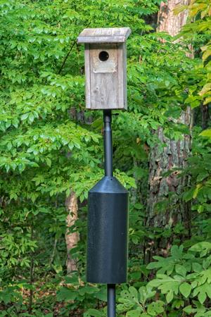 Foto de Bluebird Nesting House On Black Pole - Imagen libre de derechos