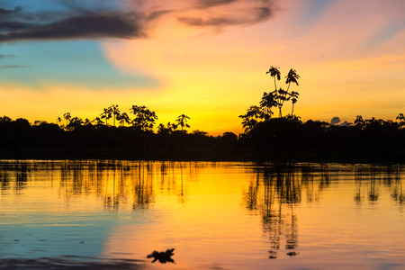 Photo for Colorful sunset deep in the Amazon Rainforest in Peru - Royalty Free Image