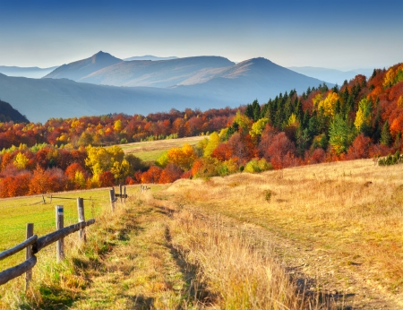 Photo pour  Colorful autumn landscape in the mountains - image libre de droit
