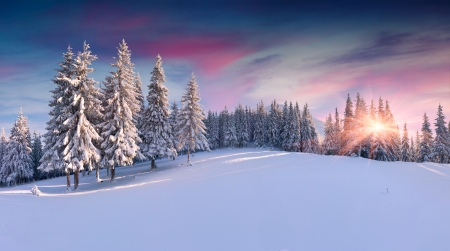 Photo for Panorama of the winter sunrise in the mountains - Royalty Free Image