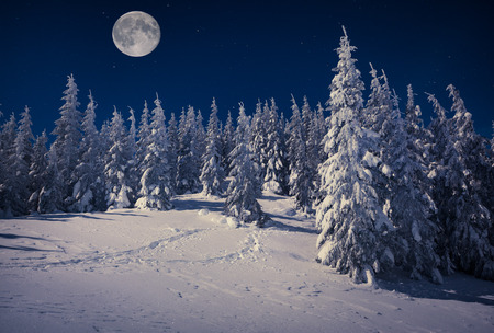 Foto de Beautiful winter landscape in the mountains at night with stars and moon - Imagen libre de derechos