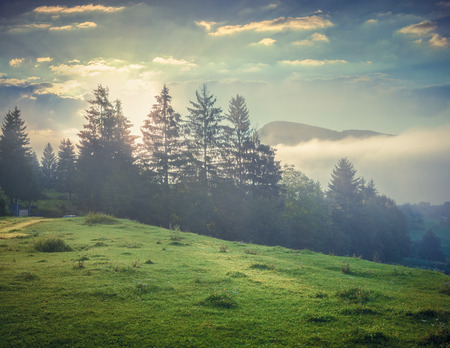 Foggy summer morning in the Triglav national park, near the Bohinj lake. Slovenia, Alps, Europe. Retro style.