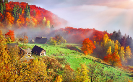 Foto de Colorful autumn landscape in the mountain village. Foggy morning in the Carpathian mountains. Sokilsky ridge, Ukraine, Europe. - Imagen libre de derechos