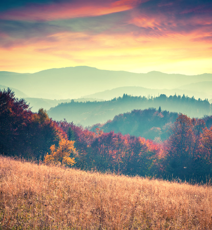 Photo pour Colorful autumn sunrise in the Carpathian mountains. Sokilsy ridge, Ukraine, Europe. Retro style. - image libre de droit