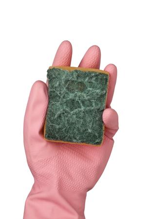 Foto de Hand in pink rubber glove holding a grungy dish sponge isolated on white background;   - Imagen libre de derechos