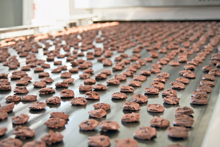 Photo for Production line of baking chocolate cookies - Royalty Free Image