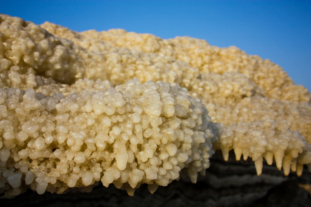 Closeup of Dead sea salt crystal in Israel