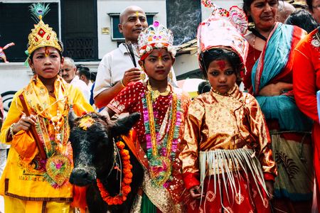 Photo for Kathmandu Nepal August 27, 2018 View of unknowns Hindu people attending a religious ceremony with a holy cow at the Pashupatinath temple in the morning - Royalty Free Image