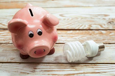 Photo pour Piggy Bank and Energy Saving Bulb on Wooden Background - image libre de droit