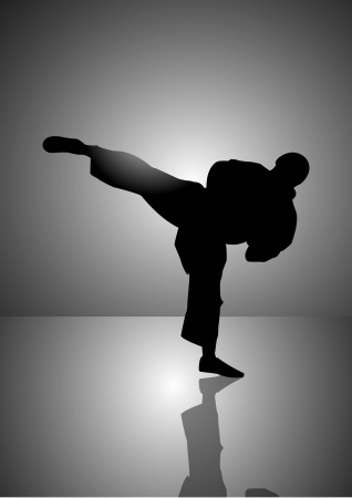 Stock vector illustration of Karate man Silhouette