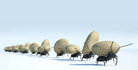Photo pour concept work, team of ants moving stones - image libre de droit