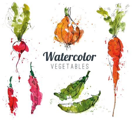 Illustration pour Set of watercolor vegetables - image libre de droit