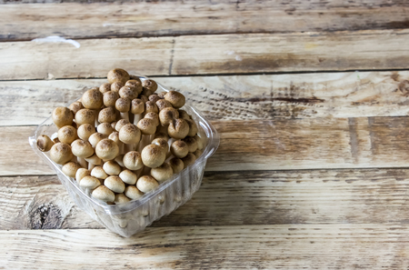 Photo for fresh brown shimeji mushroom, beech mushroom or edible mushroom in plastic box isolated on wooden background - Royalty Free Image