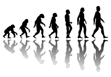 Illustrazione per Man evolution. Silhouette progress growth development. Neanderthal and monkey, homo-sapiens or hominid, primate or ape with weapon spear or stick or stone - Immagini Royalty Free