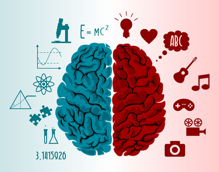 Illustration pour Brain infographics in two hemispheres with different thoughts - image libre de droit