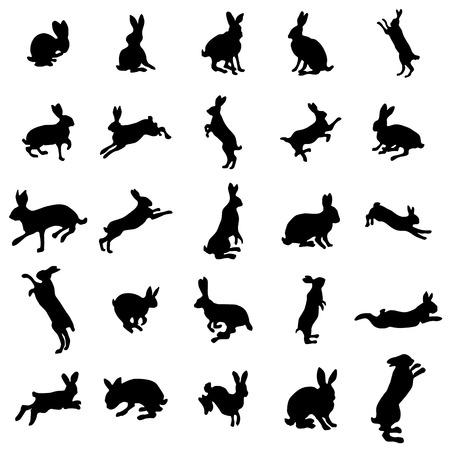 Rabbit silhouettes set on the white background