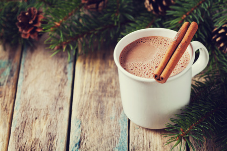 Photo for Cup of hot cocoa or hot chocolate on wooden background with fir tree and cinnamon sticks, traditional beverage for winter time, vintage toning - Royalty Free Image