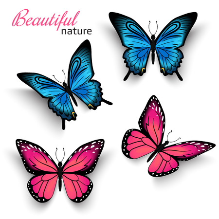 Illustration pour Beautiful realistic butterflies blue and red with shadows isolated on white - image libre de droit