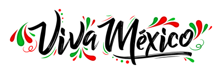 Illustration for Viva Mexico, traditional mexican phrase holiday, lettering vector illustration - Royalty Free Image