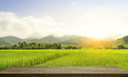 Photo for Empty wooden shelf display with paddy field background - Royalty Free Image