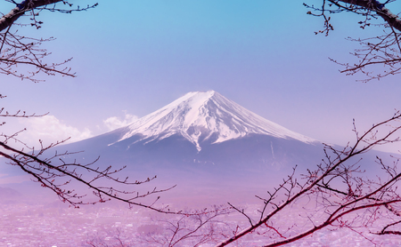 Foto de Mountain Fuji in winter framed by dry fall tree in pink color - Imagen libre de derechos