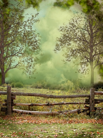 Fantasy and dreamy landscape in the forest