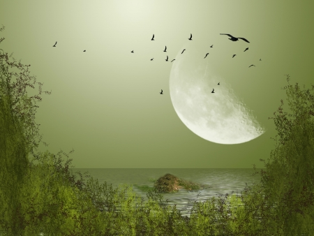 Photo for Big moon with birds in the lake - Royalty Free Image