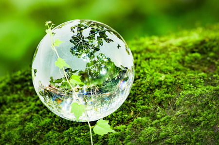 Photo for MOSS and Ivy and glass globes - Royalty Free Image